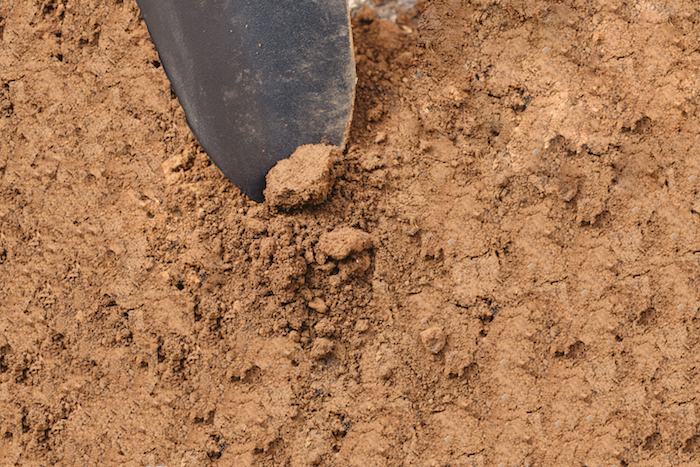 How Soil Type Affects Your Wine - The Juice | Club W