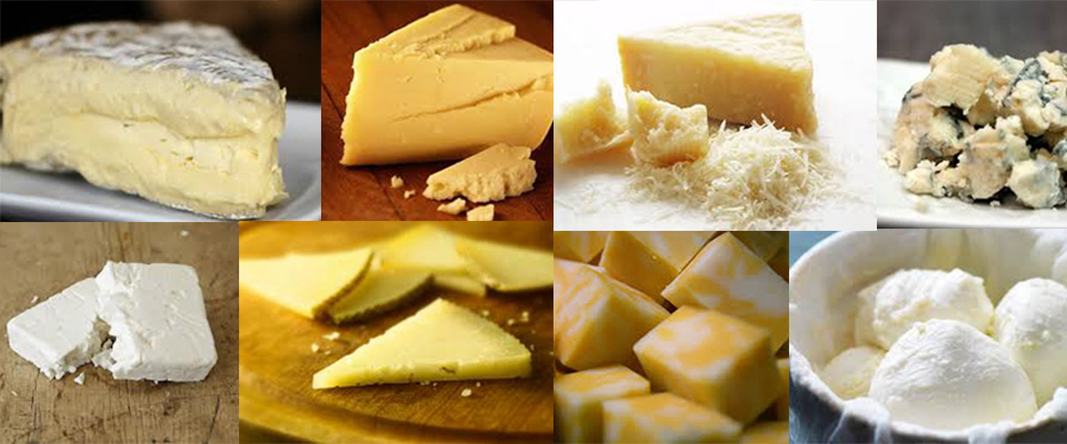 More Cheese, Please! Your Ultimate Wine & Cheese Pairing Guide