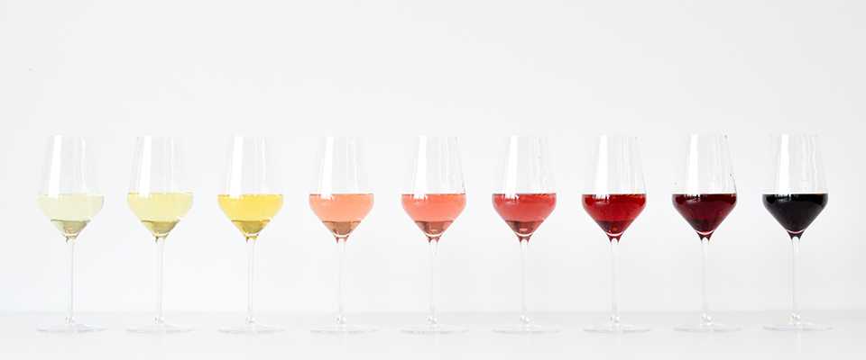 Newbie Knowledge: Tips for Wine Beginners