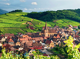 Fit for a King // What's So Good About Alsace's Noble Blends, Anyway?
