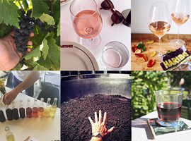 Our 10 Favorite Wine Instagrams